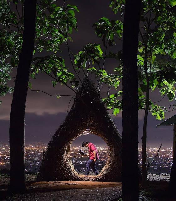 Wisata jogja 2019 - Hutan Pinus Pengger