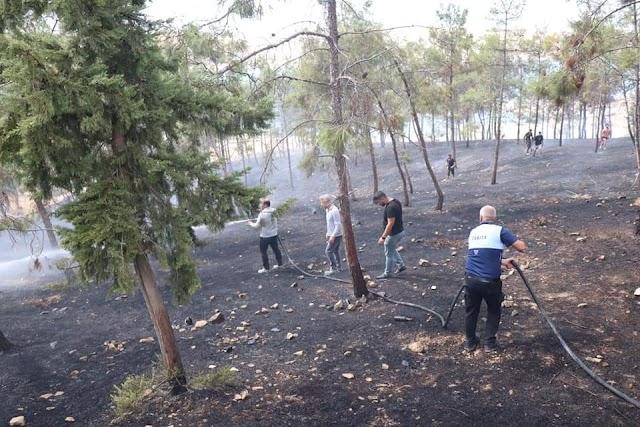 Bozova'da 3 ayrı yerde yangın