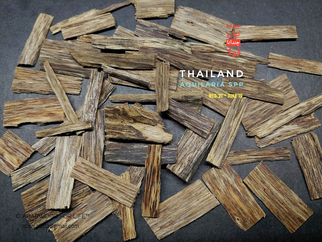 Medium grade of Agarwood from Thailand. Suits for burn as incense.