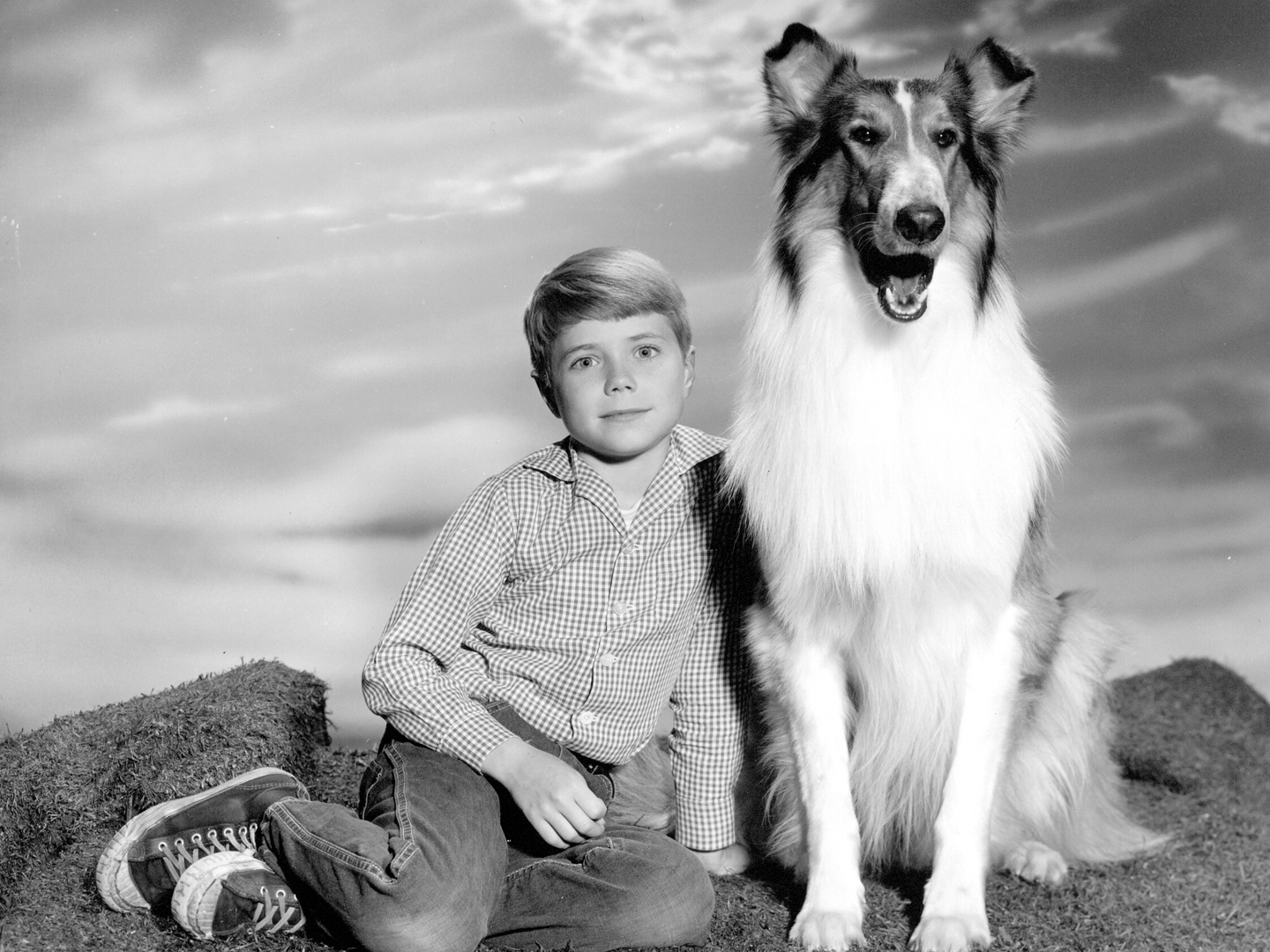 Image result for lassie tv