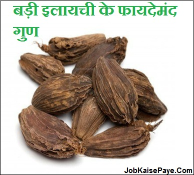 What diseases are cured by large cardamom