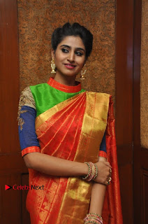 South Indian Celebrities Pos at Love For Handloom Collection Fashion Show  0101.jpg