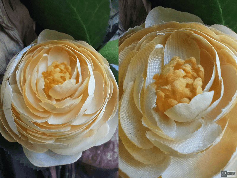 Close up shots comparison between normal and macro mode