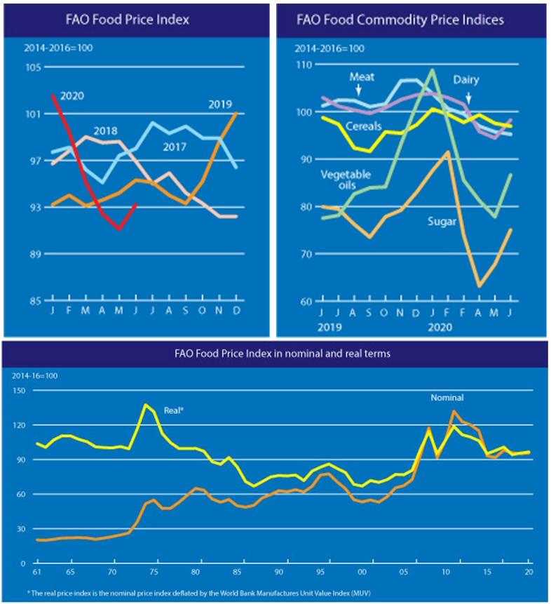 2020년 6월 세계식량가격지수 전월 대비 2.4% 상승 93.2포인트