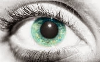 Gangguan kesehatan mata dulu kita kenal hanya belekan dan merah namun ternyata macaman pe 8 Macam Macam Penyakit Mata dan Gejala Ciri Cirinya yang Penting anda Tahu - Eye Diseases