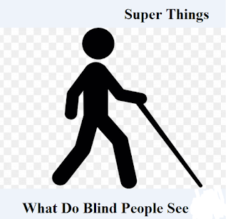 What do blind people can see