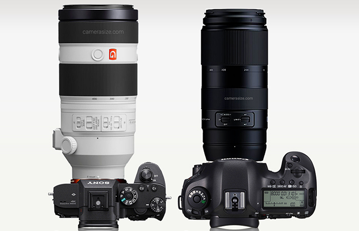 Sony 100-400 GM в сравнении Tamron 100-400mm (Canon EF)