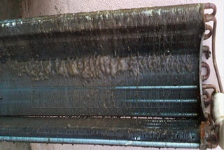 Lendir dibelakang evaporator