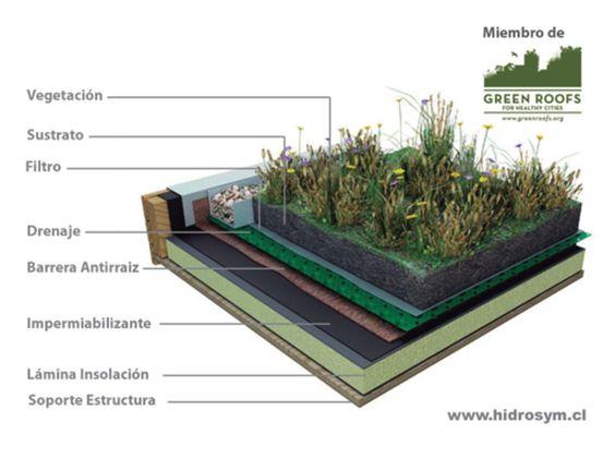 Qu es un techo verde de arkitectura for Partes del techo de una casa
