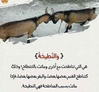 لفهم آيات القرآن الكريم 3.jpg