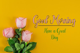 Good Morning Royal Images Download for Whatsapp Facebook23