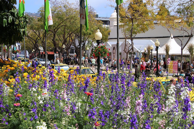 flowers that delight the city