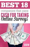 How to Get a Chance  to win 100$ from Online Surveys?