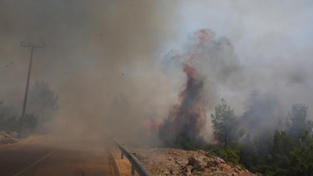 50 νέες πυρκαγιές σε όλη την Ελλάδα σε 24 ώρες