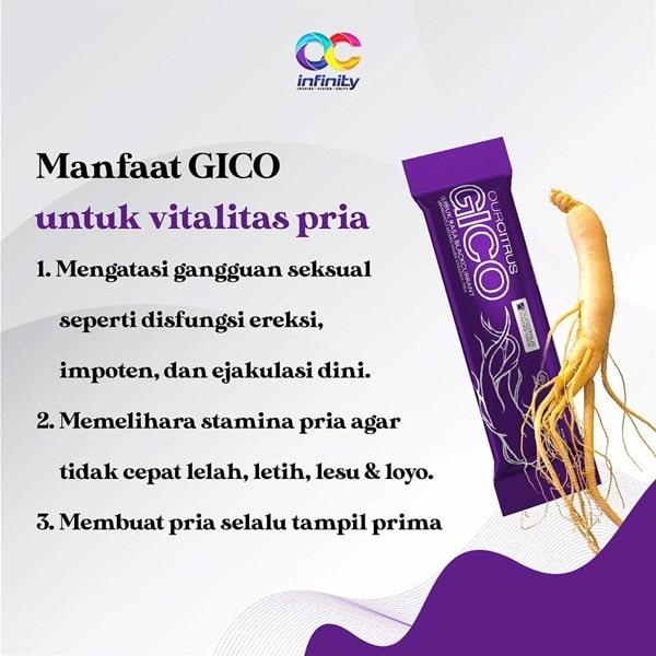 Manfaat GICO untuk vitalitas pria
