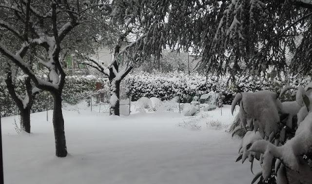 orto-a-dicembre-2017