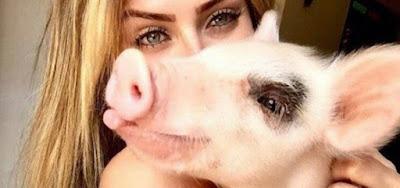 A vencedora do BBB19 Paula von Sperling com sua porca, Pippa, que estava 'de mal' dela