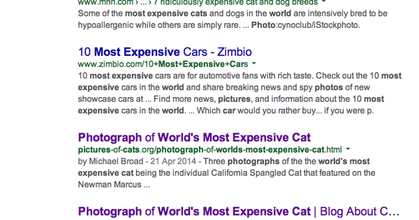 Cat Chit Chat Google Search Can T Tell The Difference Between Cat