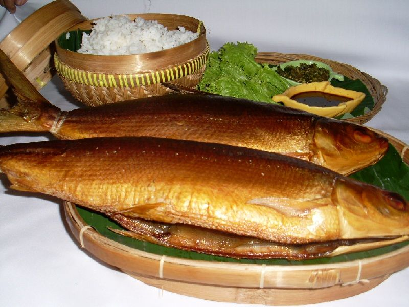 Gambar Ikan Laut Bandeng