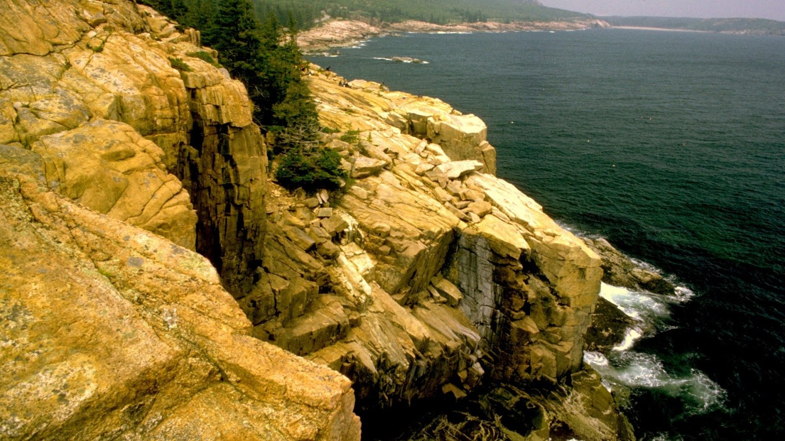 Acadia National Park USA cliffs forests SimplyWallpapers