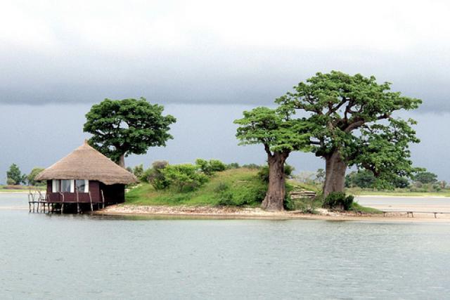 Tourisme, hôtel, île, pirogue, culture, vacance, sine, saloum, parcs, LEUKSENEGAL, Sénégal, Dakar, Afrique