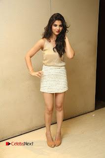 Actress Kamana Ranawat  Pictures in Short Dress at Selfie Raja Movie Success Meet  0281.JPG