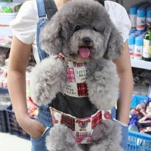 Portadores del perro y arneses de perros son una parte importante de los accesorios del perro cuando se trata de llevar a su perro a dar un paseo