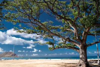 Pokai Beach