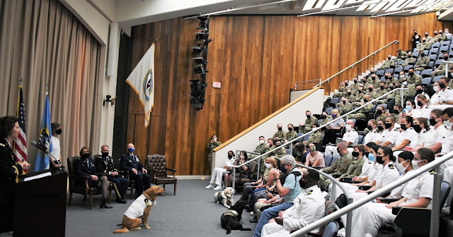 Shetland, the facility dog for the Uniformed Services University of the Health Sciences, sits in front of an audience on Aug. 18 as his accomplishments are read before his promotion from Lt. Commander in the Navy to Commander. (Photo Credit: Ian Neligh)