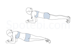 Plank Hip Twist for fat loss