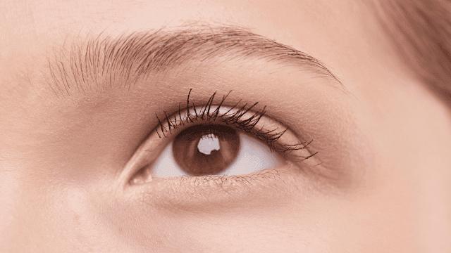 Como recuperar sobrancelhas falhadas