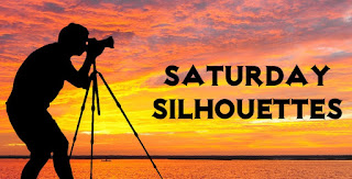https://nixpixmix.blogspot.com/2016/09/saturday-silhouettes-66.html