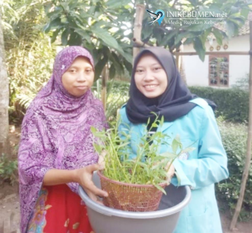Mahasiswa KKN UNS Ajak Warga Tanam Kangkung Hidroponik