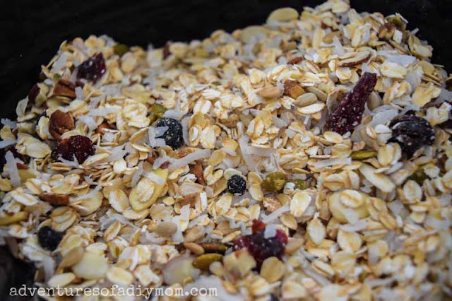 oats, seeds, nuts, coconut and dried fruit mixed together