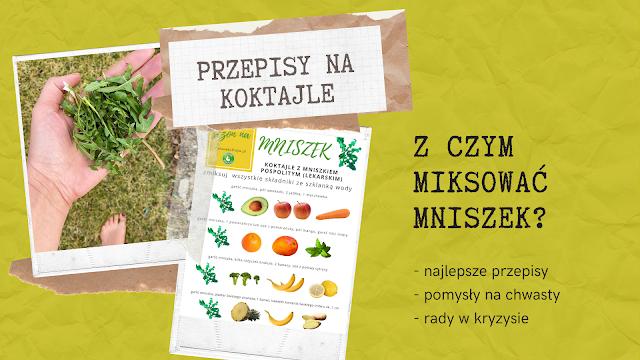 https://zielonekoktajle.blogspot.com/2020/03/najlepsze-koktajle-z-mniszkiem.html
