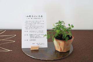山野草のぼん草展の案内のはがきと山野草盆栽の鉢