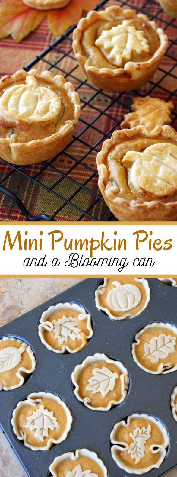 Mini Pumpkin Pies and a Blooming Can #desserts #cookies