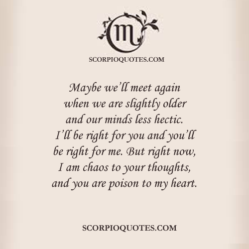 Maybe Well Meet Again Scorpio Quotes