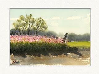 コスモス畑の水彩画。千葉県長柄町の秋元牧場で。