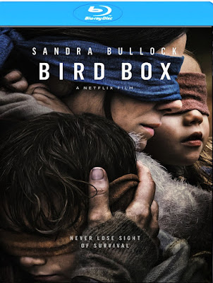 Bird Box (2018) Dual Audio [Hindi – Eng] 720p BluRay x265 HEVC 700Mb [HINDI HQ Fan Dub]