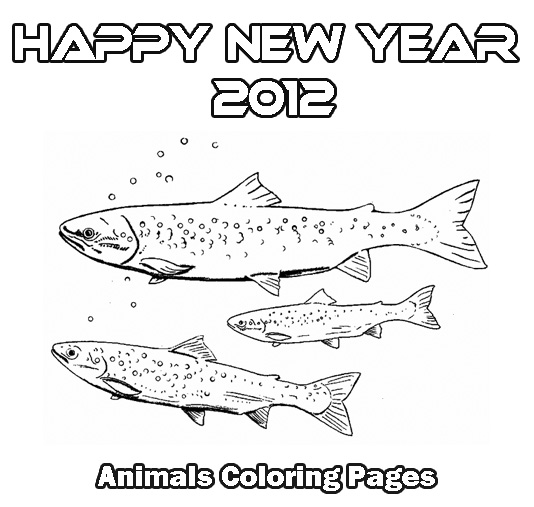 Salmon Fish Coloring Pages Sketch Coloring Page