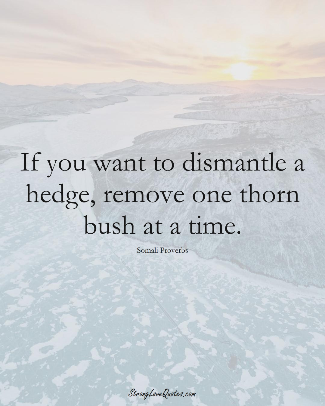 If you want to dismantle a hedge, remove one thorn bush at a time. (Somali Sayings);  #AfricanSayings