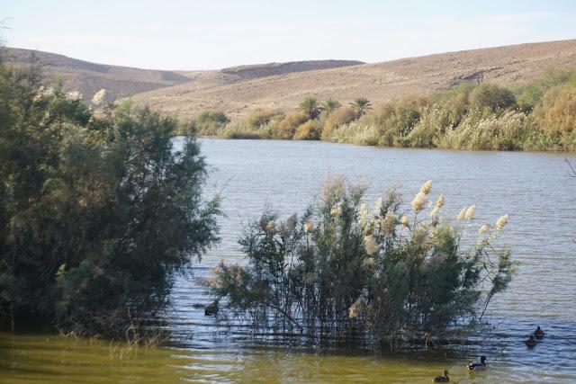 אגם ירוחם מים בלב המדבר