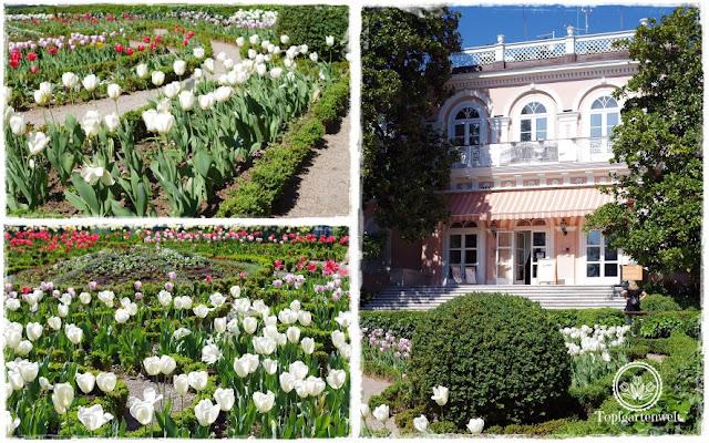 Gartenblog Topfgartenwelt Kroatien: Villa Angiolina