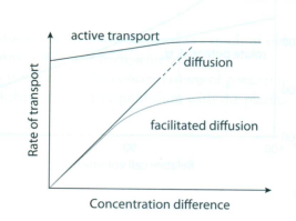rate diffusion affected temperature water The rate of diffusion can be affected by a temperature b molecule size c the from bio pure water, 09 percent saline the rate of diffusion can be affected by.