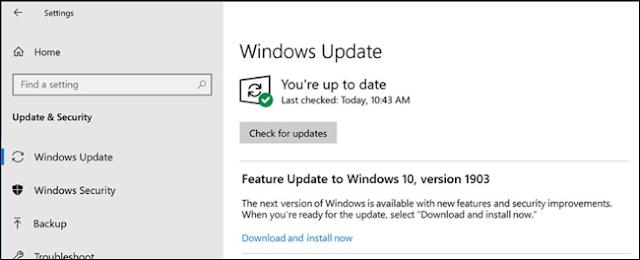 اختيار تثبيت تحديث ميزة 1903 في Windows Update