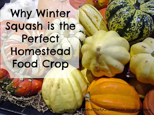 Why Winter Squash is the Perfect Homestead Food Crop