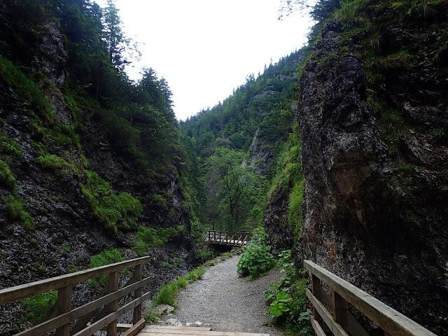 Dolina Białego Potoku (dolne piętro)