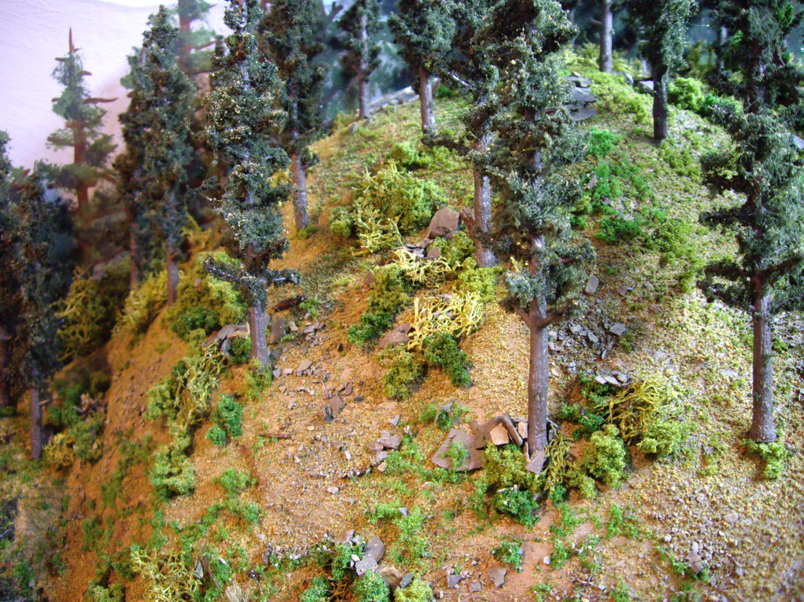 Completed mountain forest scenery consisting of various model trees, ground foams, talus and field grasses