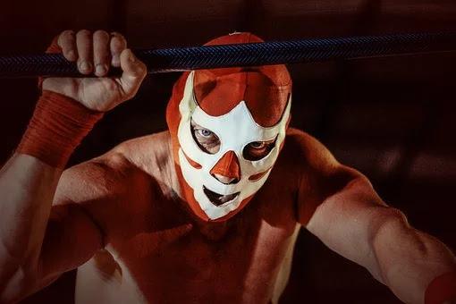 WWE का मालिक कौन है ? पूरी जानकारी !